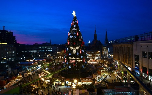 Christmas Trees Get Lit: Pictures