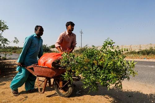 Pakistani man aims to bring shade to Iraq's Arbaeen pilgrims