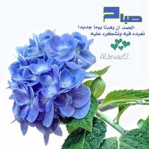 الصباح والمساء - Magazine cover