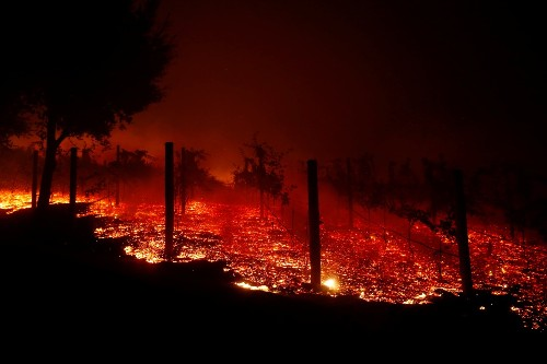 Deadly Wildfires Rage in California: Pictures