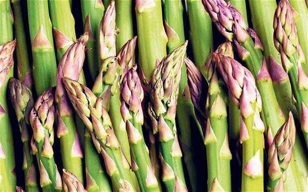 How Britain's taste for year-round asparagus is threatened by climate change
