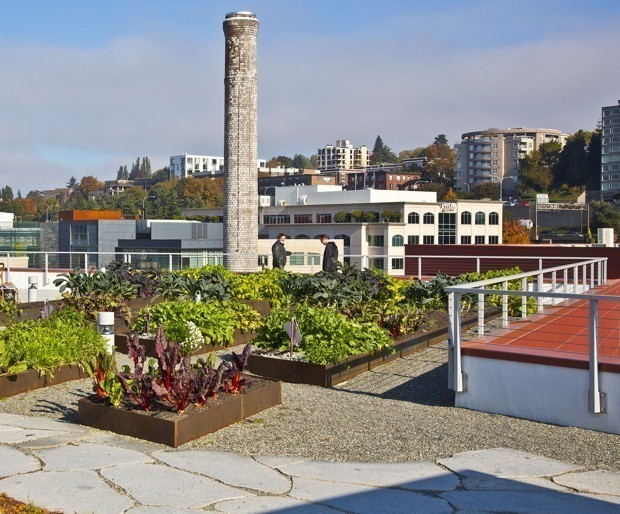 The Newest Odd Couple: Real Estate Developers and Urban Farmers