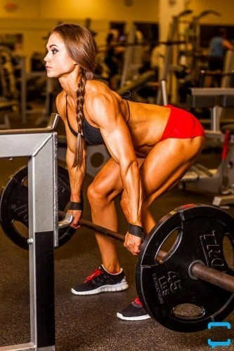 Workout Tips And Supplement Reviews cover image