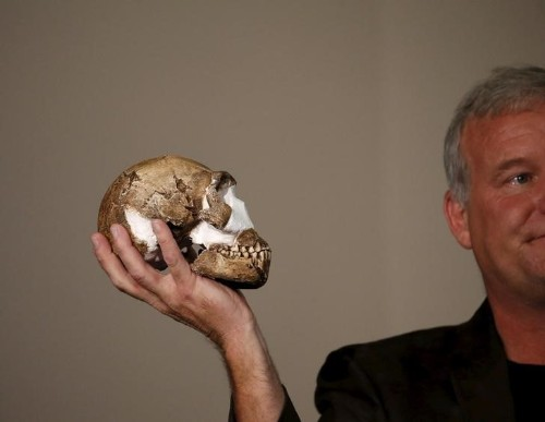 Critics question fossil find, but South Africa basks in scientific glory