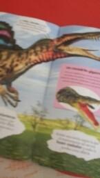 Garra Del Suchomimus - Magazine cover