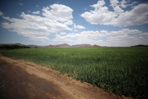 Presidential panel member rejects final report on South African land reform