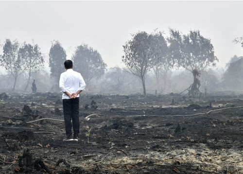 Indonesia sends more people, aircraft to battle forest fires