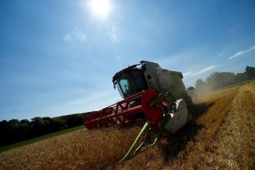 Bundes- und Länderhilfen sollen Bauern vor Pleiten retten