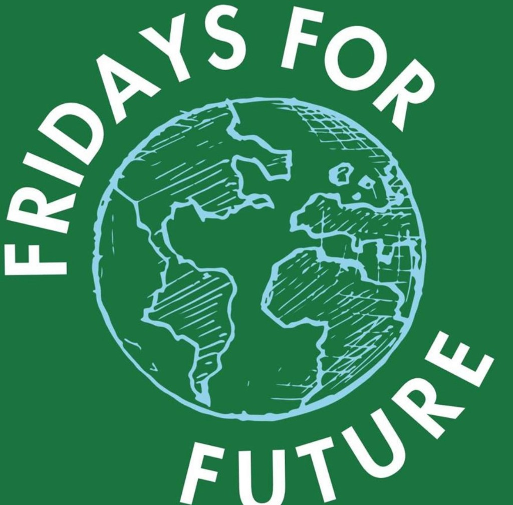 #FridaysforFuture - cover