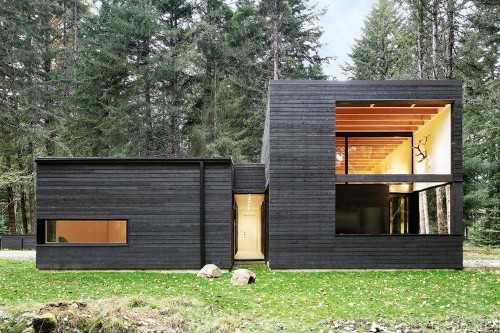 Articles about couple builds their ideal retirement home forest on Dwell.com