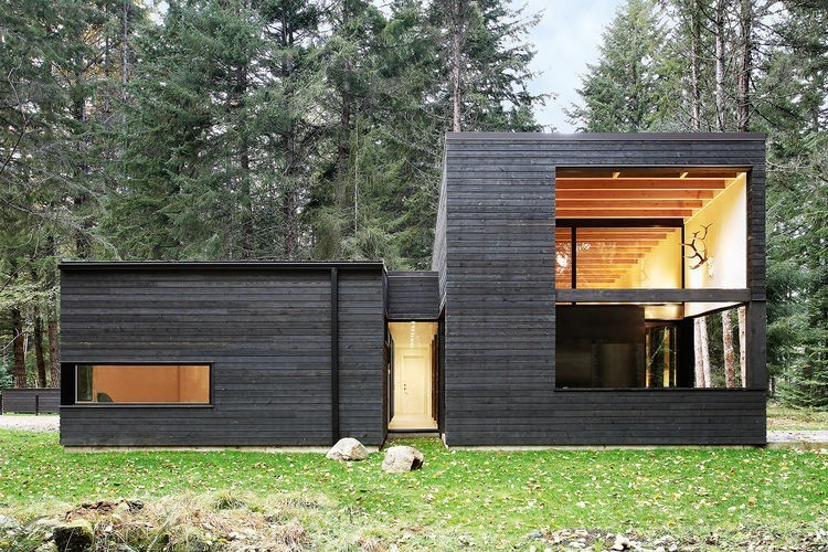 Articles about couple builds their ideal retirement home forest on Dwell.com - Dwell