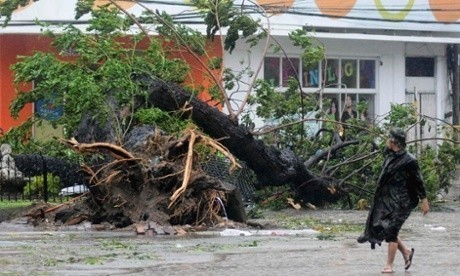 Typhoon Haiyan and climate change Q&A