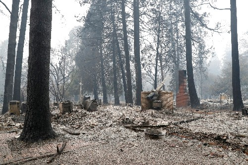 Explainer: Blame climate, but crowded forests also fuel California fires