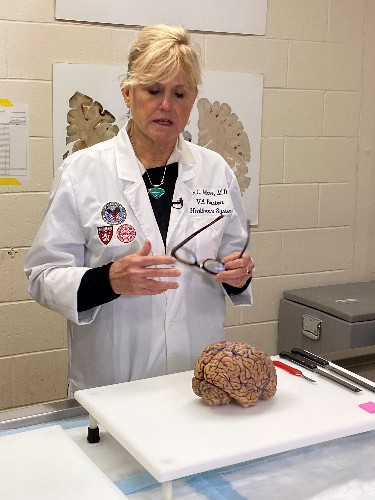 In brains of dead athletes, researchers seek clues to head trauma