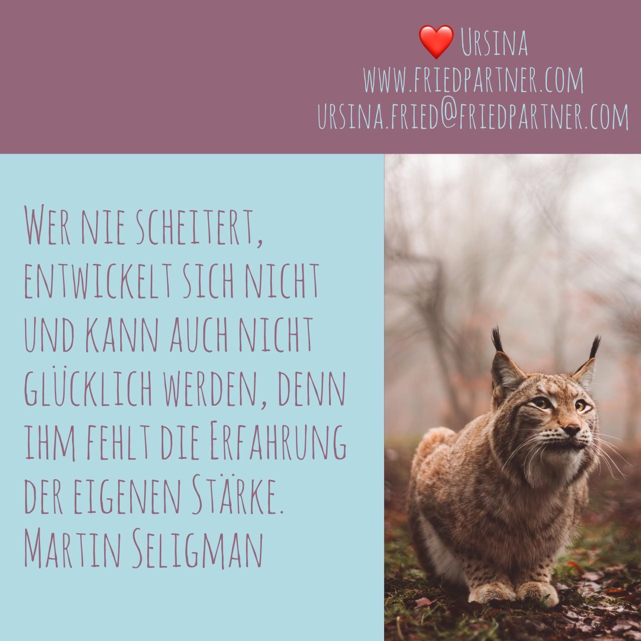 Meine Selbstmotivation... wenn es aussichtslos scheint. ❤️ Ursina #brave #shaman #power #lifecoach #transformation #chance #lebensmotto