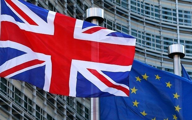 Business advisers to David Cameron and major UK companies decline to sign pro-EU letter