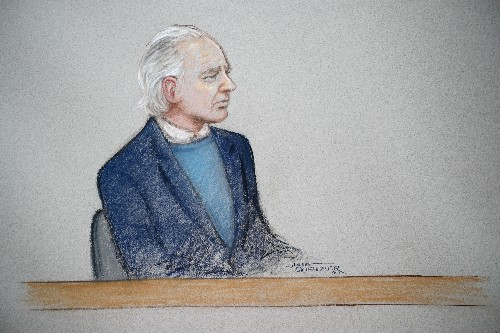 WikiLeaks founder Assange appears confused at extradition hearing