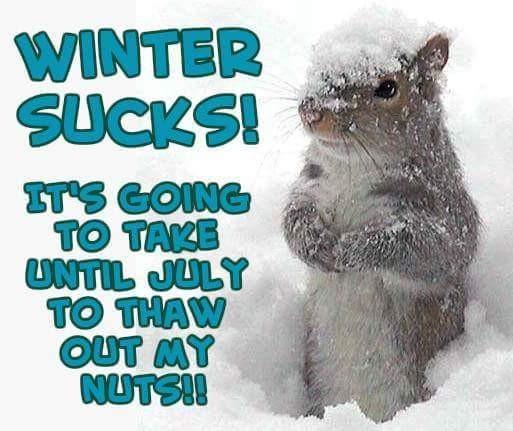 got to love winter