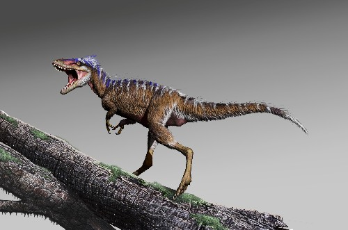 Modest dinosaur dubbed 'harbinger of doom' set stage for T. rex