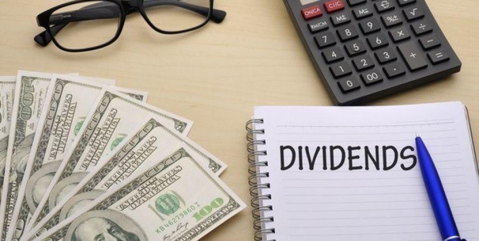 The Dividend Investor - Magazine cover