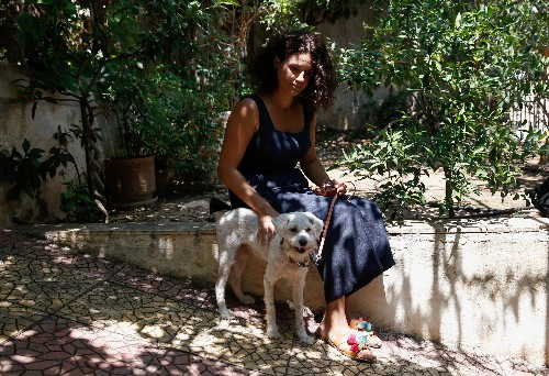 Loukoumakis the dog recovers from Greek wildfire