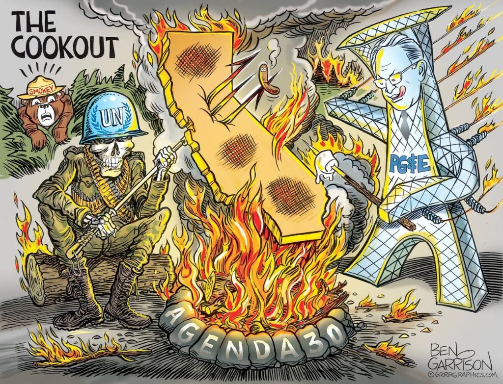 Political Cartoons  - cover