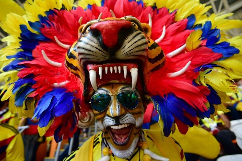Those Crazy World Cup Fans: Pictures