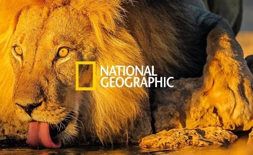 National Geographic España llega a Flipboard