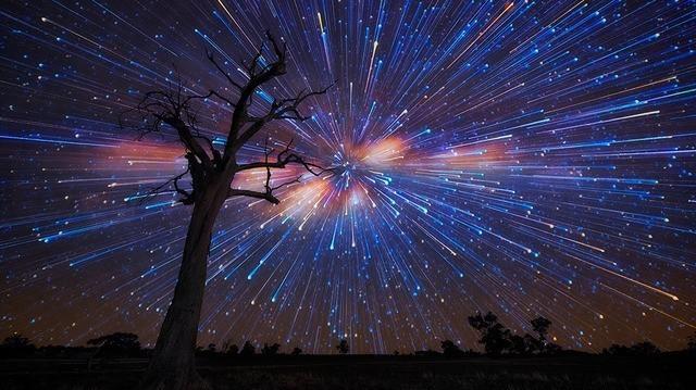 Den Baum  abgesägt und aufgeteilt cover image