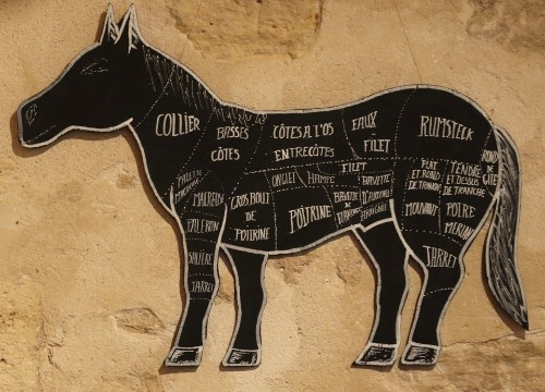 The Troubled History of Horse Meat in America