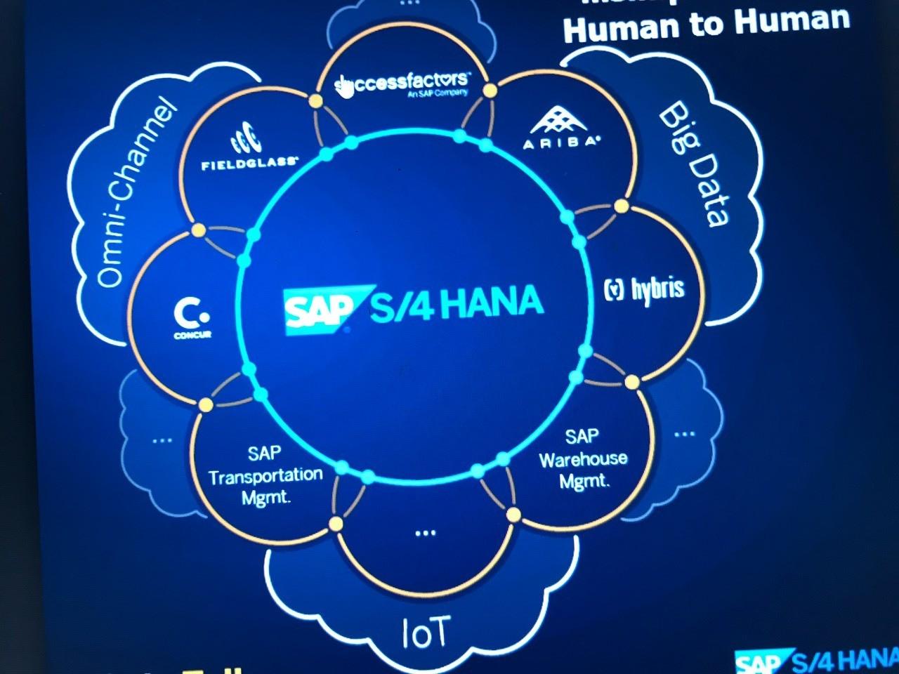SAP S4HANA Guide
