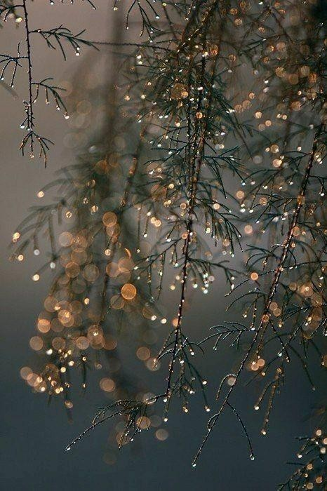 Winter ❄️⛄❄️... again - cover