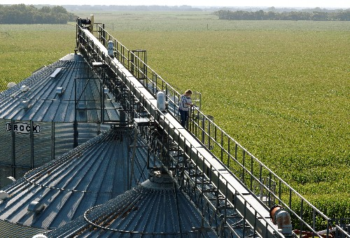On the front lines: Trade war sinks North Dakota soybean farmers