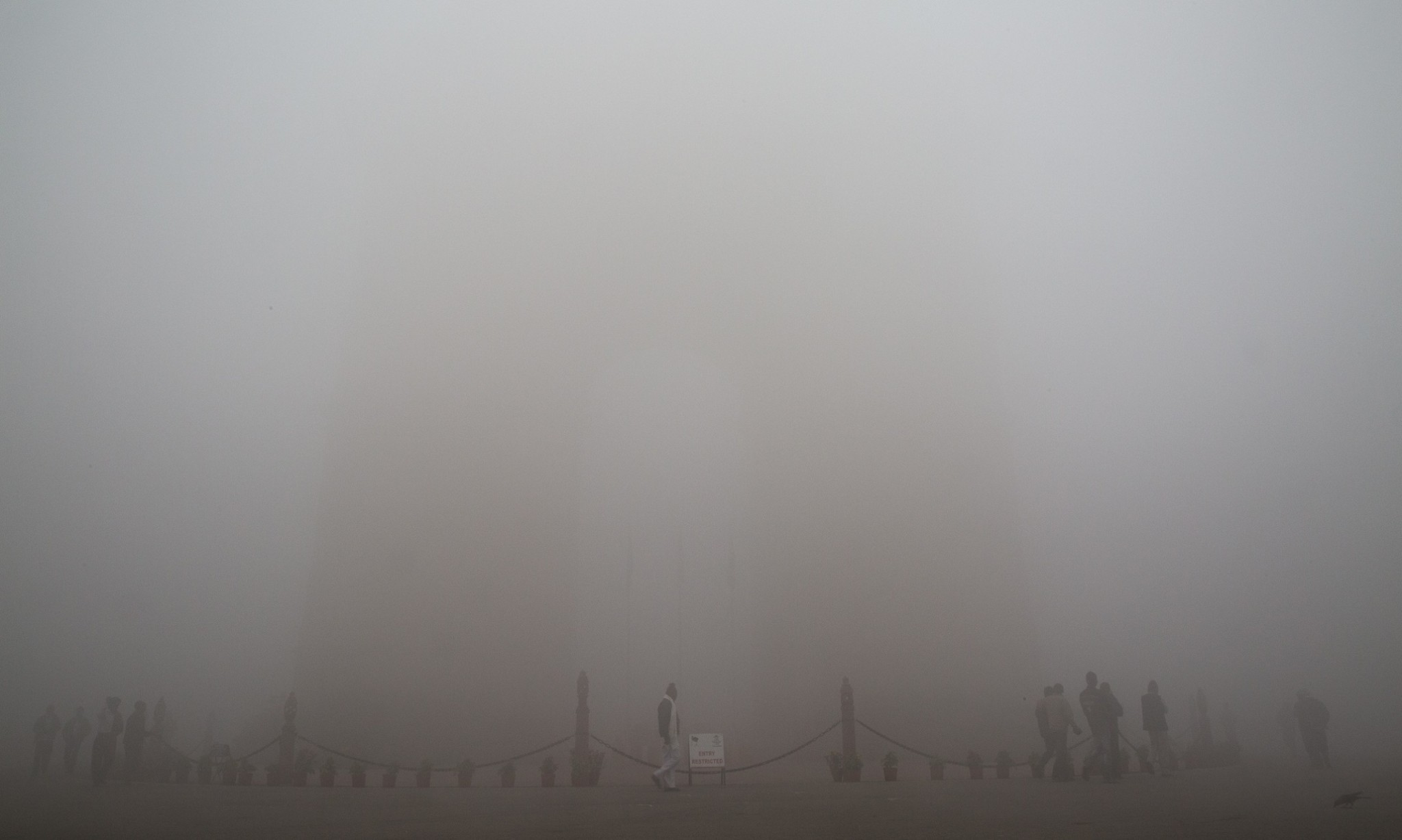 India air pollution 'cutting crop yields by almost half'