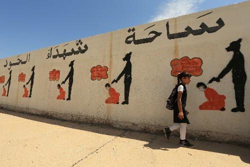 Islamist militants adapted after losses: U.S. State Dept.