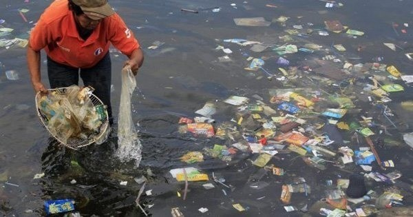 This Is Where Plastic In The Ocean Ends Up