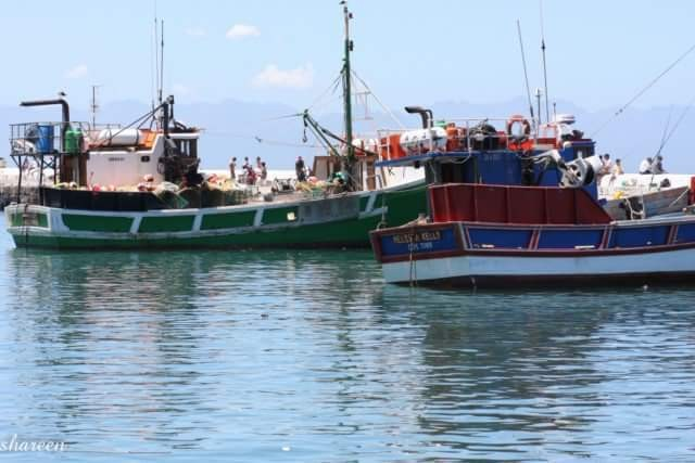 Fishing boats tied up at Kalk Bay harbour Cape Town