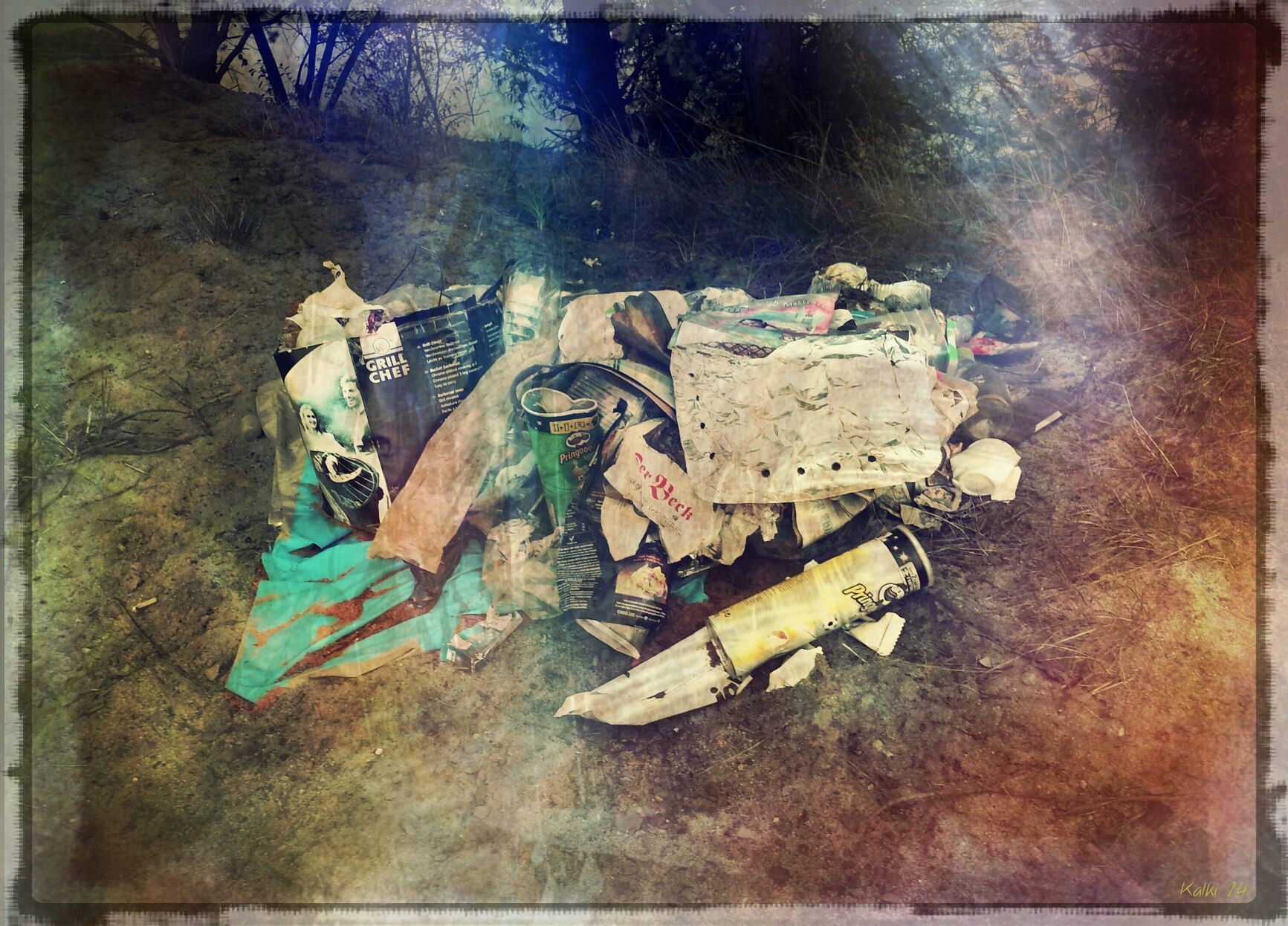 TITEL: Het afval in het bos! ...... LOCATION: Baggersee Erlangen Germany..... ©Copyright by Kalki Kalkbrenner™