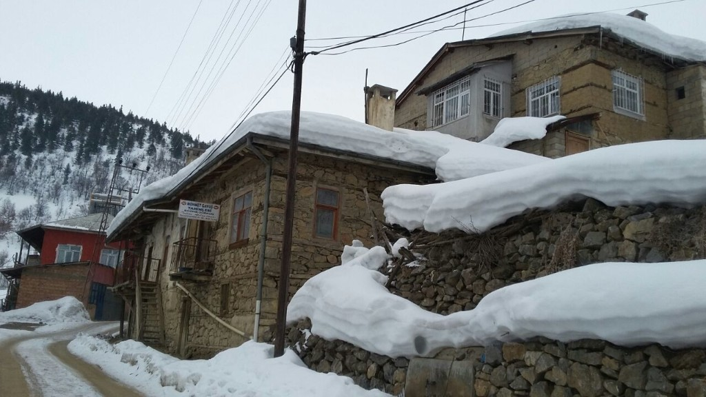 Köyüm  - cover