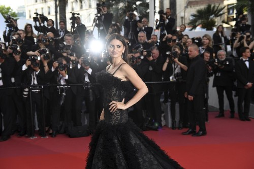 Opening Night at Cannes: Pictures
