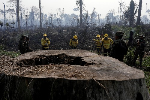 Hundreds killed in Brazil's Amazon over land, resources in past decade: HRW report