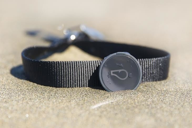 Whistle straps its connected dog collar onto Sigfox's new internet of things network