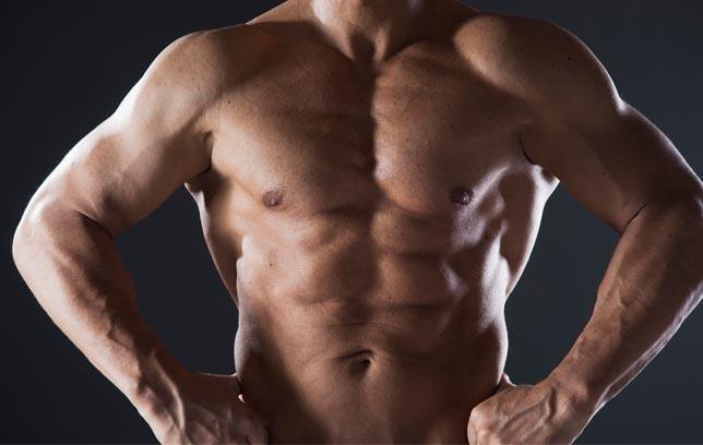 bauchmuskel