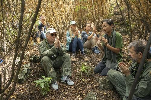Paul Simon plants a tree at Hawaii forest preserve on Maui