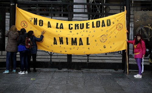 Vegetarians gaining ground in carnivorous Argentina