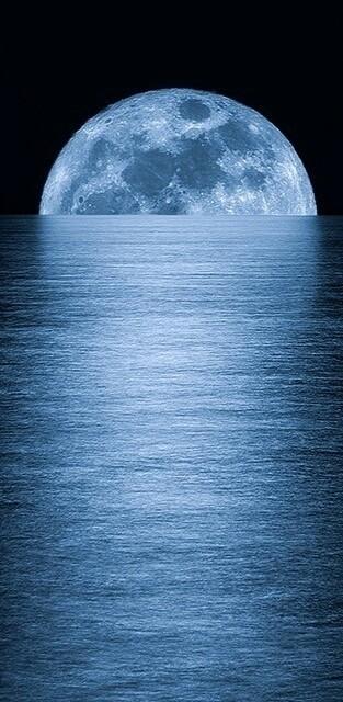 Dreams.  - cover