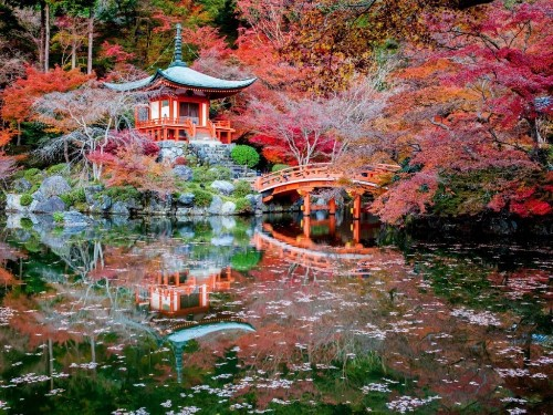 24 photos that will make you want to visit Japan