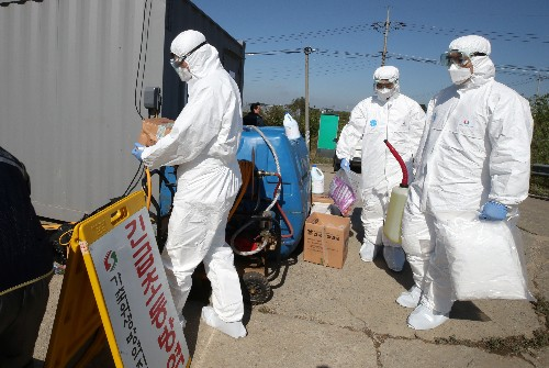 South Korea confirms second case of deadly African swine fever, pledges vigilance