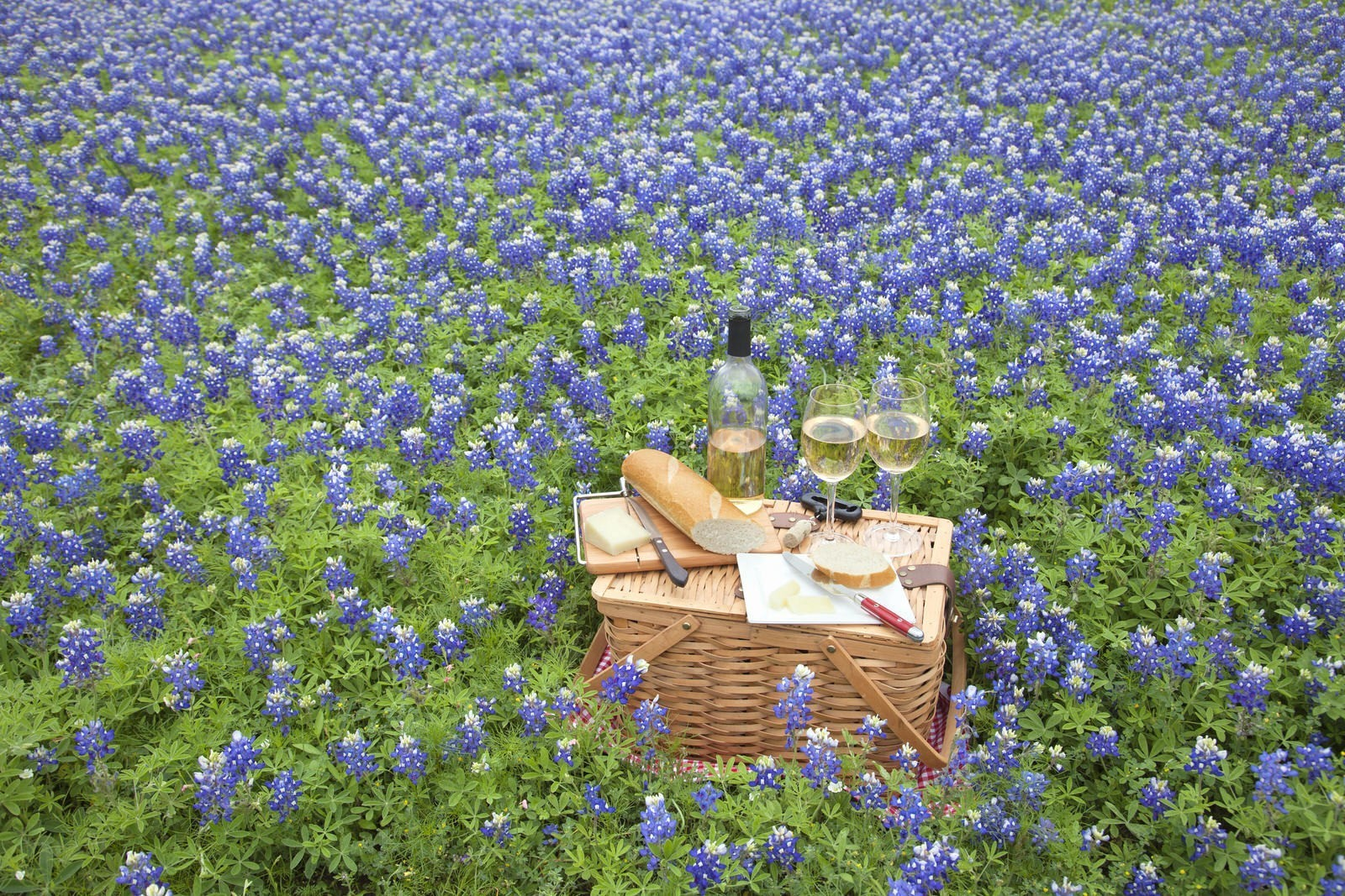 Road-tripping through Hill Country: Texas' up-and-coming vineyards