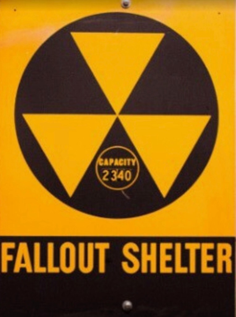 Nuclear Disaster Survival - cover